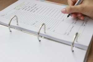 pagina-dia-agenda
